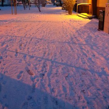 Zimowe dywagacje