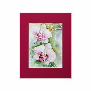Storczyki różowe - akwarela na sprzedaż