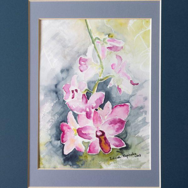 Storczyki - akwarela kwiaty Inga Linder-Kopiecka
