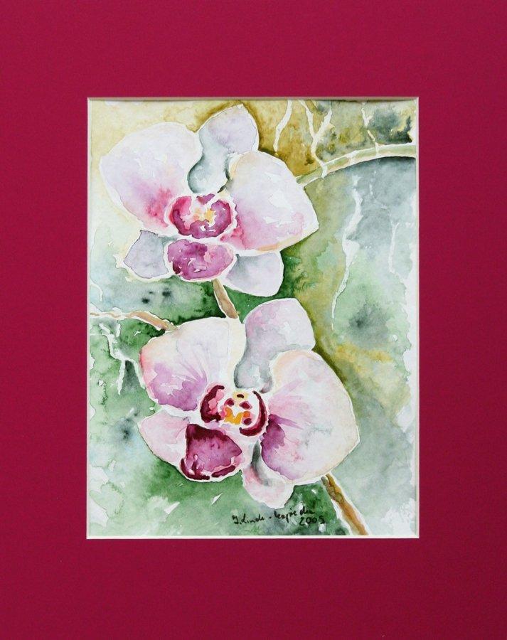 Storczyki różowe - akwarela Inga Linder-Kopiecka